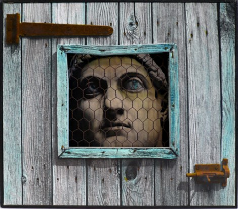 cage_1.jpg